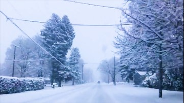 A snowy drive to work