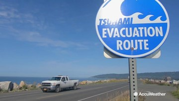 Preparing for the next big tsunami