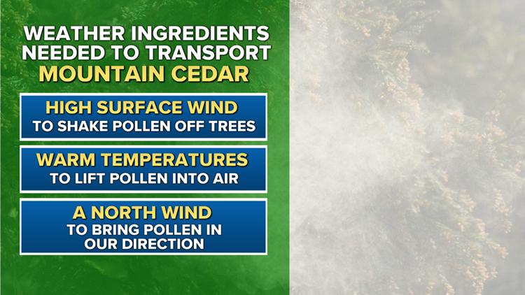 Weather ingredients needed to transport mountain cedar