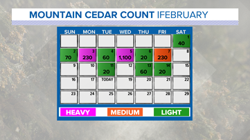 Cedar season coming to an end | WEATHER MINDS