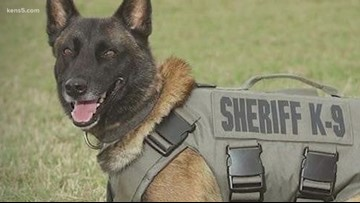K-9 Chucky laid to rest