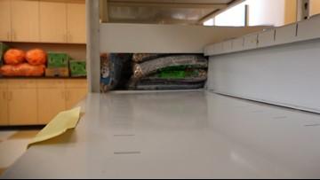SAC food pantry seeking additional donations