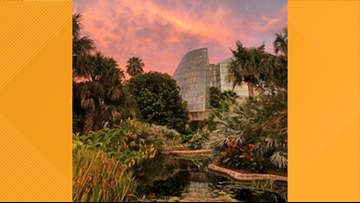 New to Town: Get in touch with nature at the San Antonio Botanical Garden