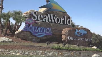 Sea World couples share their stories