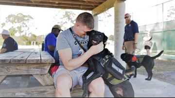 K9s for Warriors gives the gift of companionship to disabled veterans | KENS Cares