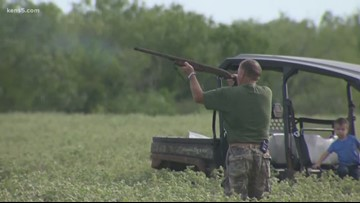 Texas Outdoors: It's Dove Season