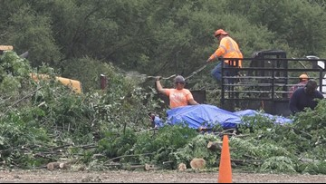 SATX to recycle 1,500 tons of debris from last week's storms...and you can benefit