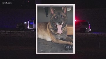 Report suggests K-9 Chucky was fatally shot from behind while attempting takedown of armed suspect