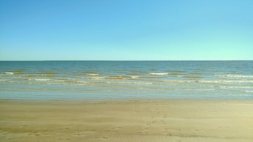 Texas Gulf Coast beaches reporting high levels of fecal