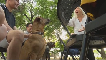 Blessing of the Animals ceremony brings pets, people together