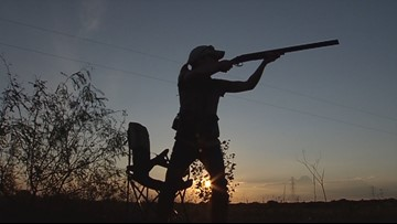 Texas Outdoors: Dove hunting season is approaching