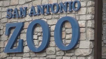 San Antonio Zoo donates food to Haven for Hope