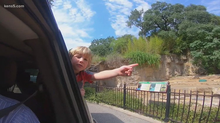 Drive-thru zoo experience becomes popular pandemic tradition | Texas Outdoors