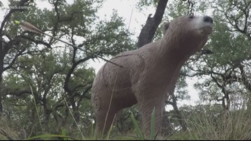 Texas Outdoors: The art of bow hunting