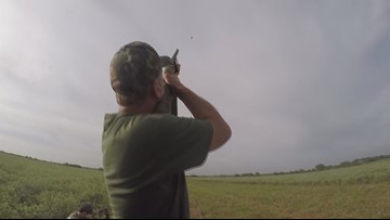 Texas Outdoors: It's more than just dove season...it's a tradition!