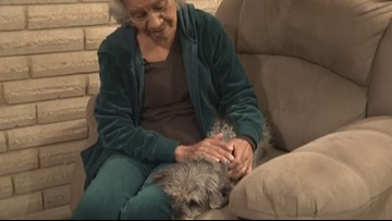 Woman reunited with beloved pet after brazen dognapping