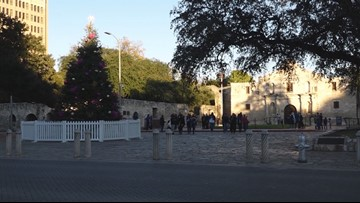 Some San Antonio residents put at ease after H-E-B donates second tree for Alamo Plaza