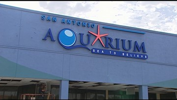 San Antonio Aquarium reopens after approval from inspectors