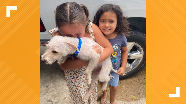 BCSO reunites dog with its humans, dog missing for almost two months 🐾
