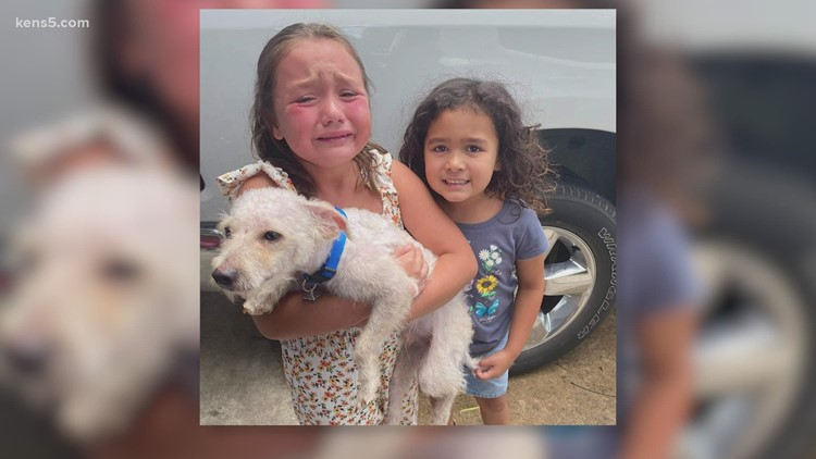 BCSO reunites dog with its humans, dog missing for almost two months