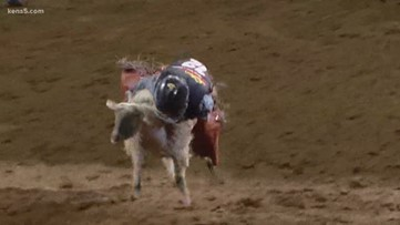 Mutton Bustin' highlights for Wednesday, Feb. 19