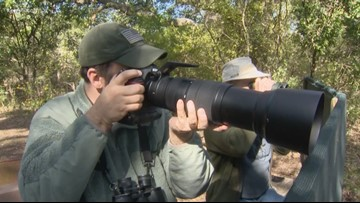 Texas Outdoors: Warbler Woods