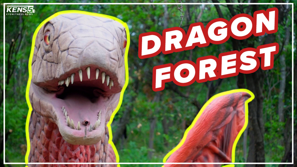 Dragons take over San Antonio Zoo! | Everything 210