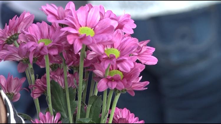 San Antonio could add $1 million in domestic violence prevention funding