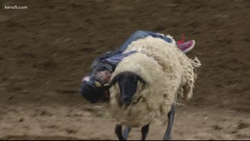 Mutton Bustin' victor scores a whopping 91 points
