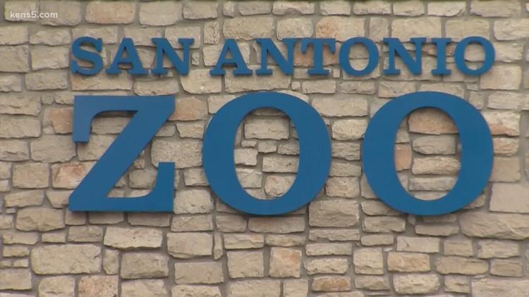 San Antonio Zoo members can bring a friend for free through Saturday