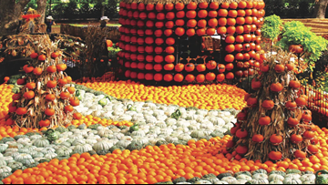 'One of America's best pumpkin festivals'