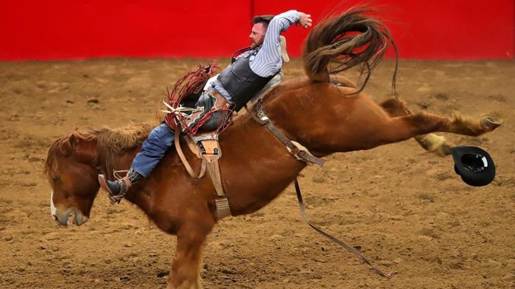 San Antonio Stock Show & Rodeo
