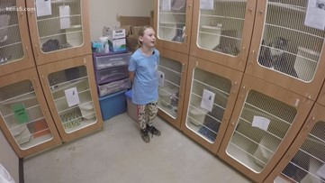 9-year-old finds 'Purfect' place to volunteer | Kids Who Make SA Great