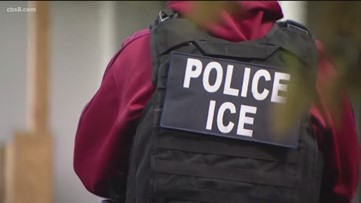 ICE suspends immigration enforcement amid Tropical Storm Barry