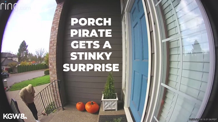 'I filled up a box full of dog poop': Porch pirate gets a stinky surprise