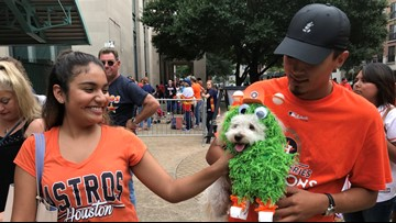 Kate Upton, Justin Verlander promote adoptions at Astros 'Dog Day at the Park'
