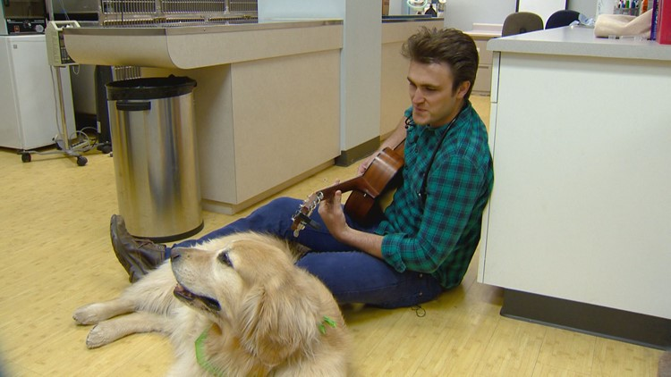 Watch this veterinarian croon Elvis to a nervous dog and have your heart melted
