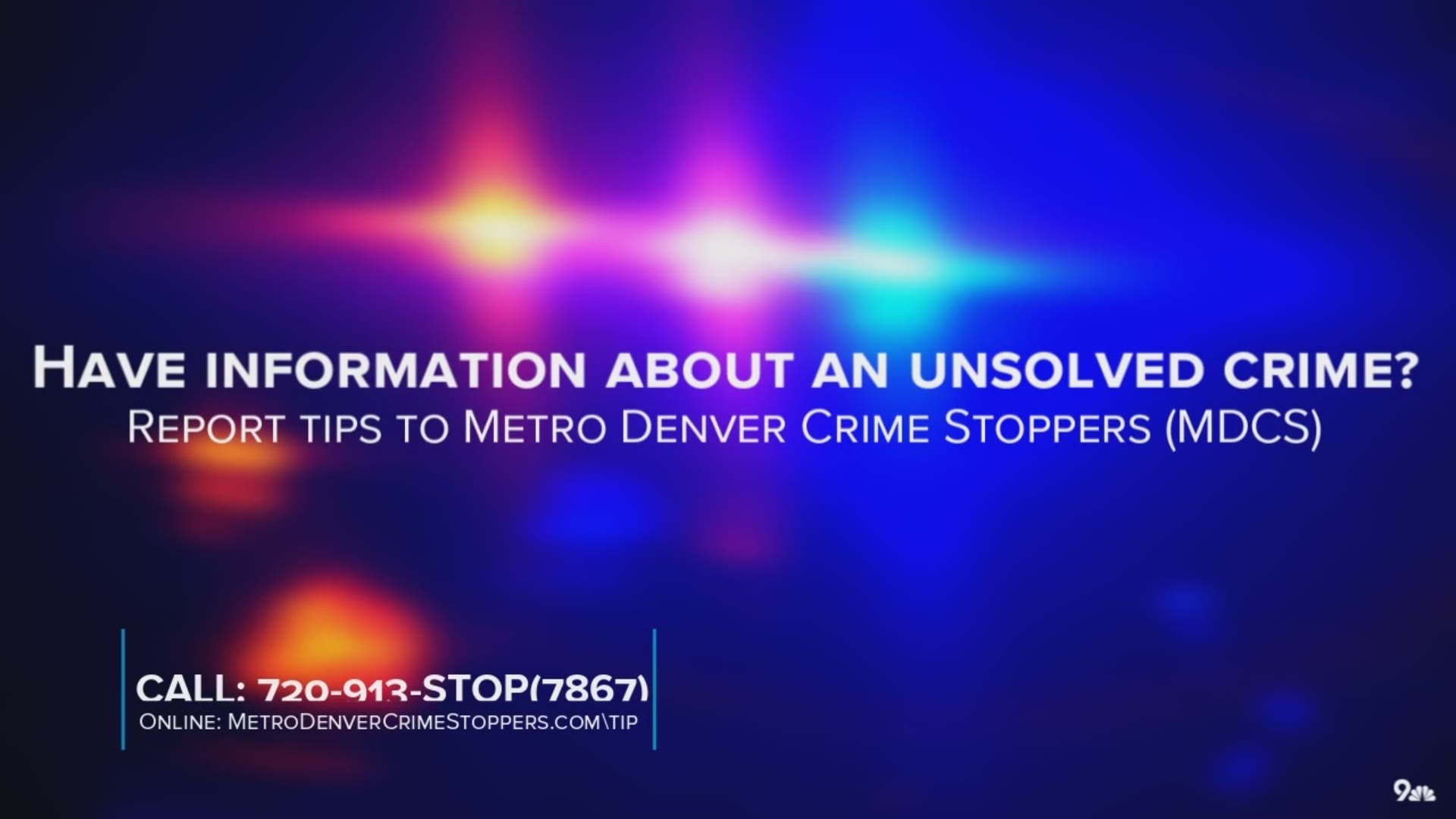 thornton colorado theft of puppies warrant issued for suspect kens5 com kens 5