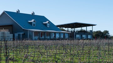Texas Hill Country winery starts virtual tastings to keep business going during pandemic