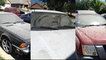 'It looked like fog coming in': McKinney residents concerned after waking up to find neighborhood coated in dust