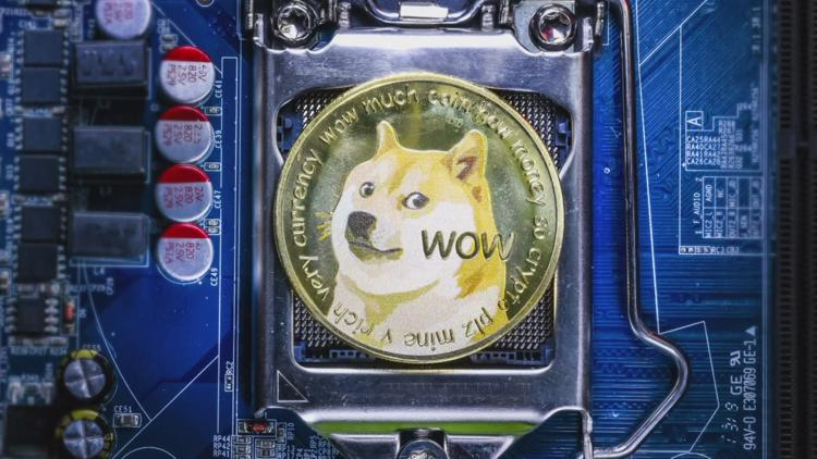 Donor uses Dogecoin to pay for Florida animal shelter's adoption fees