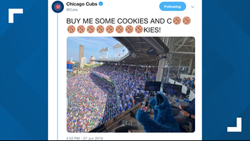 Cookie Monster sings 'Take Me Out to the Ballgame' at Chicago Cubs game