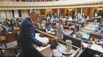 Virginia Democrats win control in both state Senate and House of Delegates